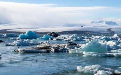 Things to Consider While Subscribing the Iceland Tour